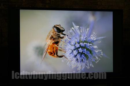 sharp lc-70le845u 3d led 1080p review